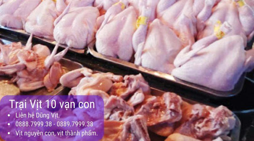 Bỏ sỉ vịt tươi nguyên con Bình Dương – Đồng Nai – Thành phố Hồ Chí Minh TPHCM – Bà Rịa Vũng Tàu
